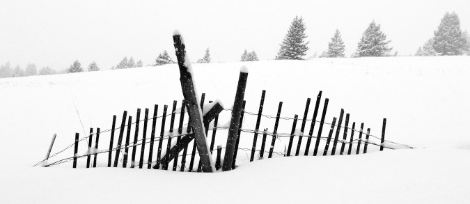 broad fence (1)