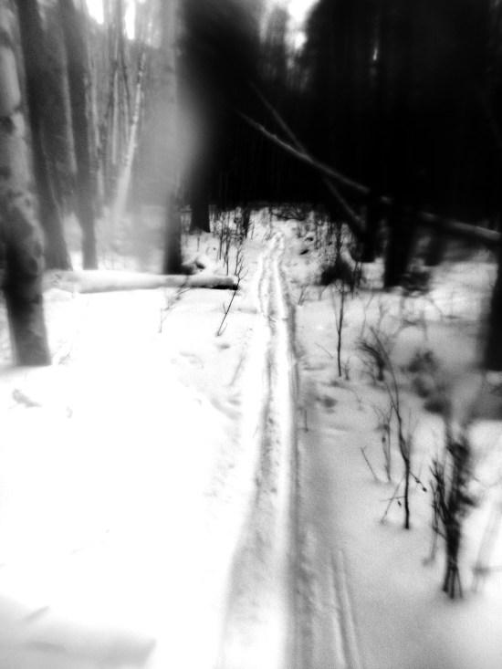 skiis (1)
