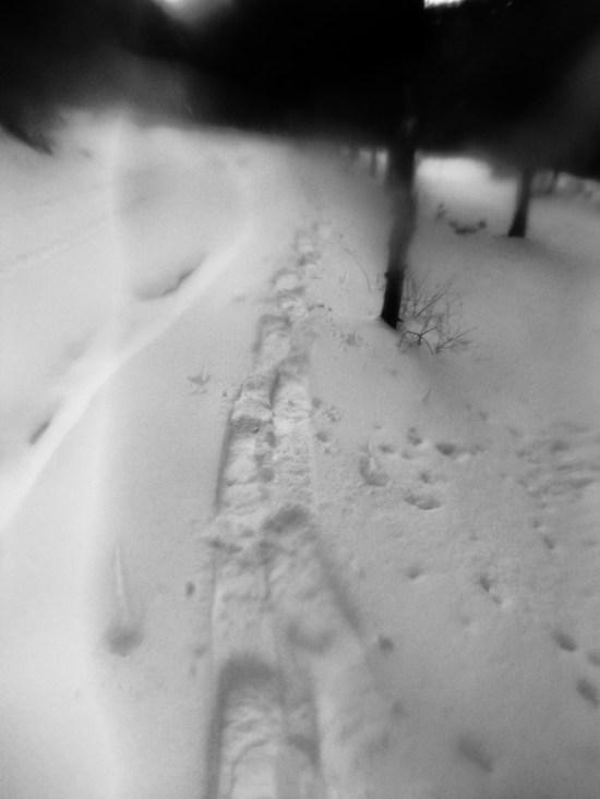 skiis (2)