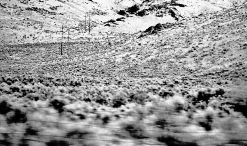 snow shot