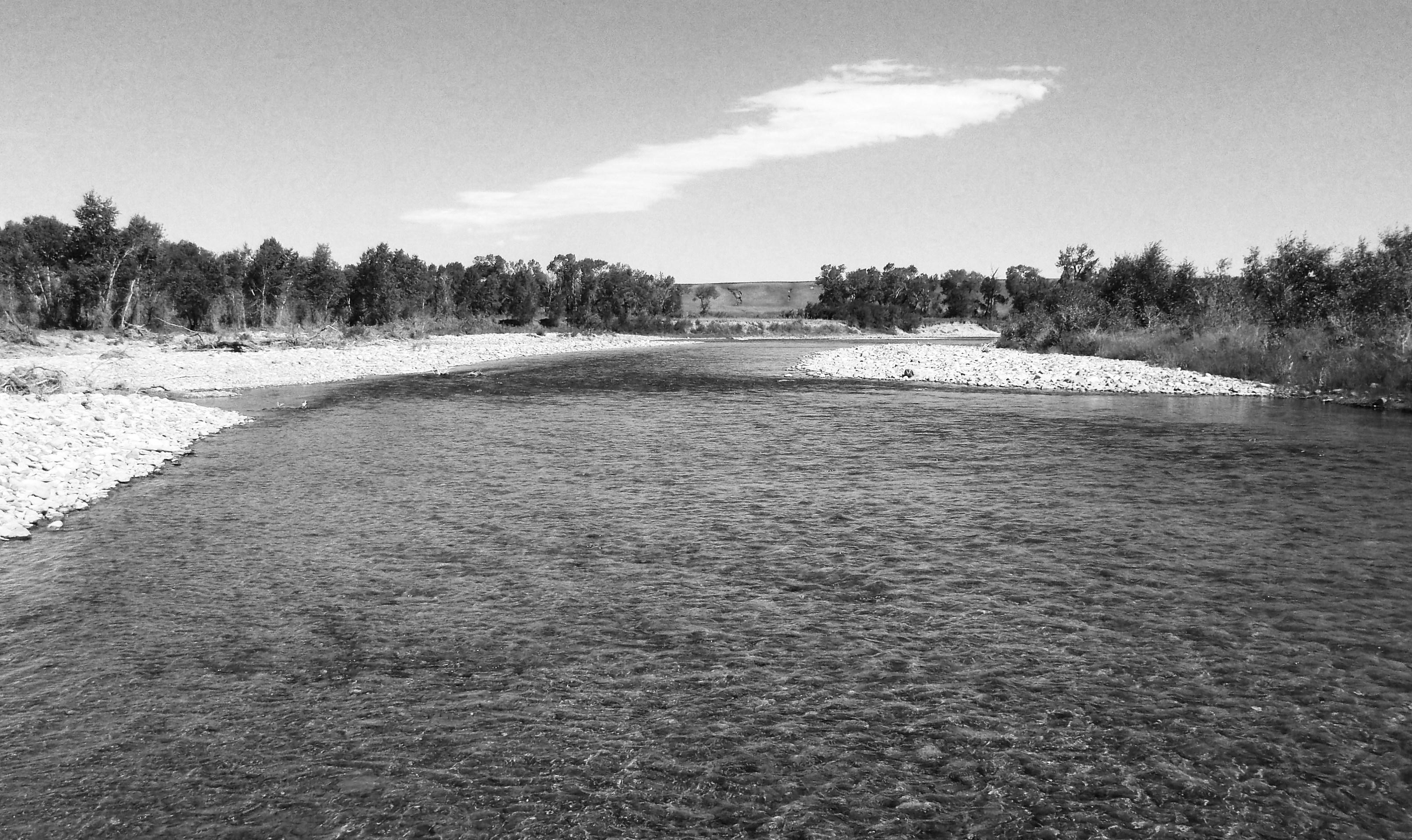 Y Elk River Mn elk river | tro...