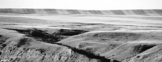 field psttern