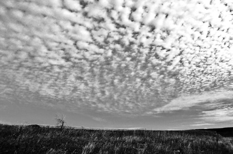 late clouds (2)