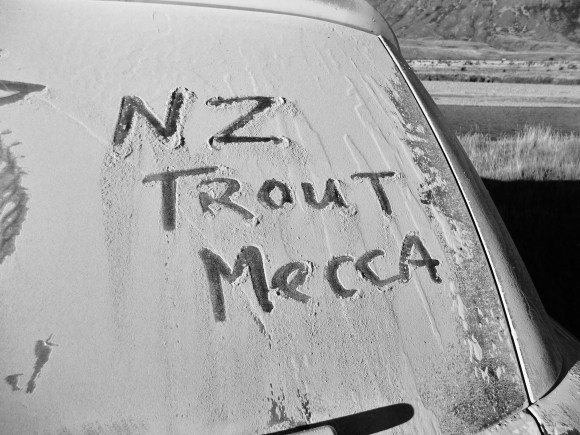 nz car window 2
