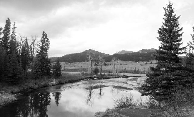 downstream2